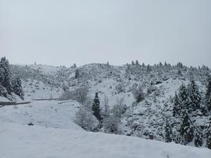 Λευκό πέπλο τύλιξε την Ορεινή Ναυπακτία (φωτο)