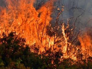 Πάτρα: Ερευνά καταγγελία για εμπρησμό η πυροσβεστική