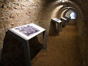 Η Πάτρα τιμά και γιορτάζει τα 77 χρόνια απελευθέρωσής της από τα ναζιστικά στρατεύματα κατοχής