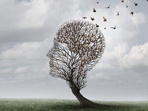 Νόσος Αλτσχάιμερ: Το αρωματικό βότανο που μας προστατεύει