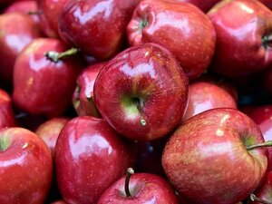 Ξέρατε ότι τα μήλα κάνουν καλό στο μυαλό;