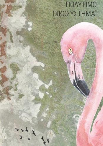 Έκθεση φωτογραφίας «Αλυκή Αιγίου - Επαναπροσεγγίζοντας ένα πολύτιμο οικοσύστημα» στο Αρχοντικό Παναγιωτόπουλου