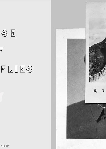 """""""House of Butterflies"""" στη Δημοτική Πινακοθήκη Πατρών"""