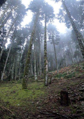 Three Peaks Enduro Race - EGS 2020