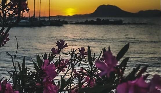 Ο τελευταίος μήνας της Άνοιξης υποκλίνεται στην Πάτρα με... όμορφες αποχρώσεις (pics)