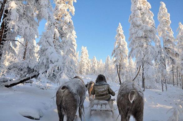 Oymyakon (Ρωσία) Χαμηλότερη θερμοκρασία: −71,2°C