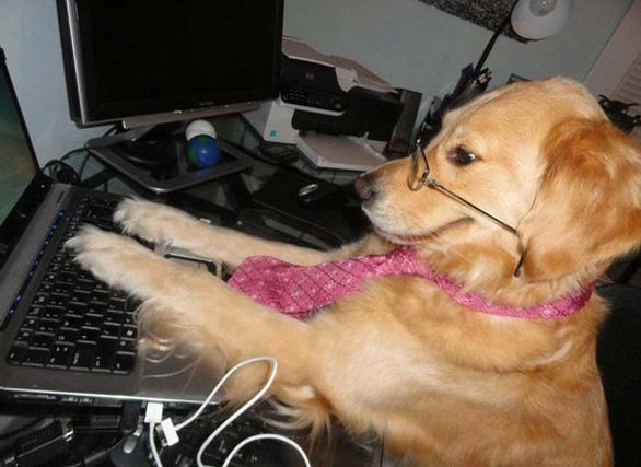 Ο σκύλος που συμπεριφέρεται σαν να είναι... άνθρωπος (pics)