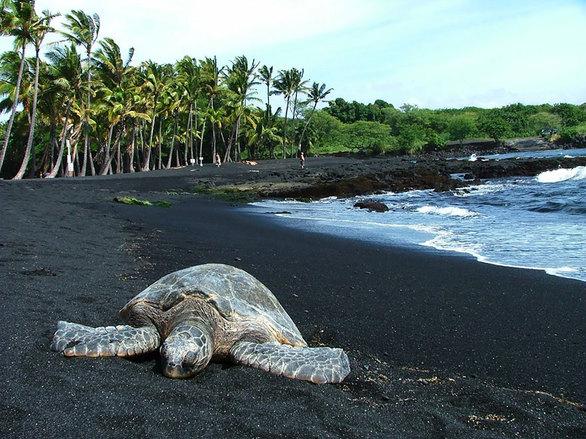 Η μαύρη άμμος της παραλίας δημιουργήθηκε από το πέτρωμα βασάλτης, μετά από το πάγωμα της λάβας όταν έπεσε στη θάλασσα.