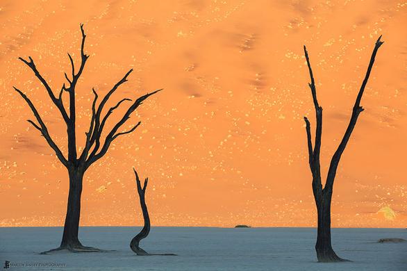 Εικόνες από άλλον πλανήτη! (pics)