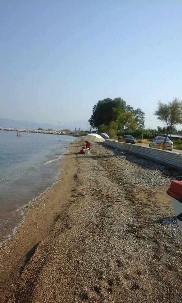 Πάτρα: Κάνουν μπάνιο στις… Ιτιές - Η κρίση «έριξε» στη θάλασσα τις απαγορεύσεις (pics)