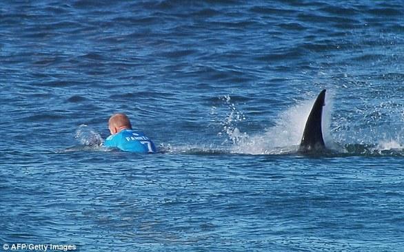 Αυτός είναι ο σέρφερ που γλίτωσε από επίθεση καρχαρία! (pics+video)