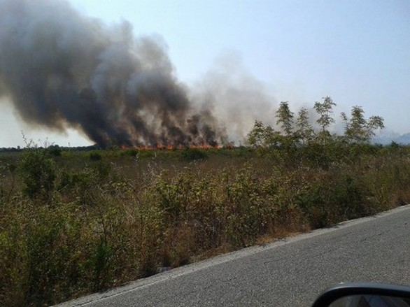 Δυτική Ελλάδα: Συναγερμός για πυρκαγιά στο Άκτιο (pic)