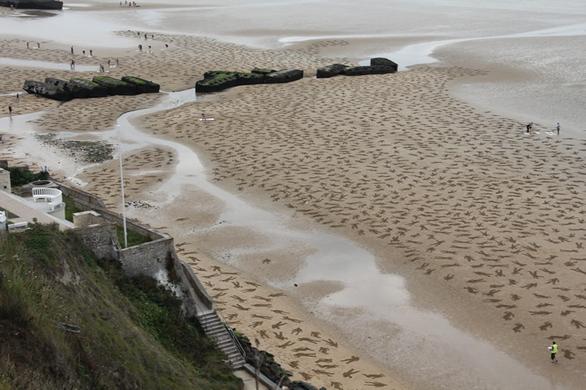 Ένα μοναδικό δημιούργημα πάνω στην άμμο! (pics)