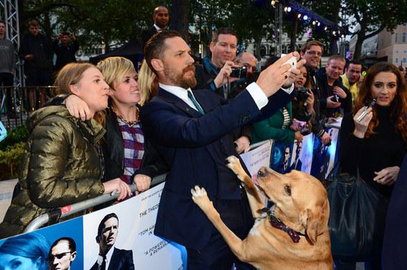 """Ο Tom Hardy πήρε τον σκύλο του στην πρεμιέρα του """"Legend""""! (pics+video)"""