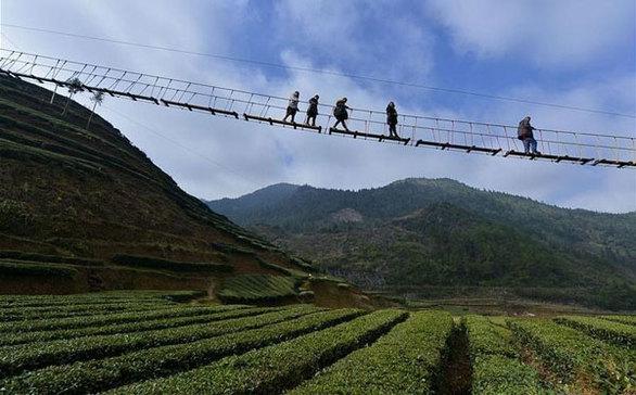 Πεζογέφυρα για… τολμηρούς ανθρώπους! (pics)