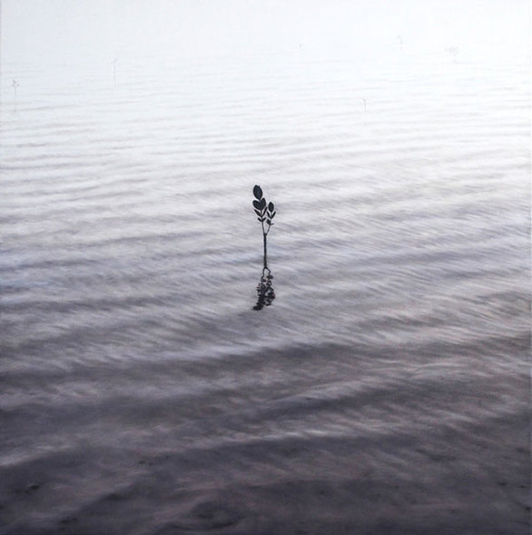 Εντυπωσιακές ζωγραφιές των αντανακλάσεων στο νερό! (pics)