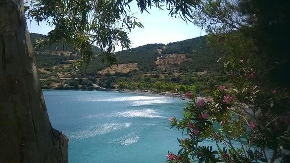 Στον Άγιο Νικόλαο της Φωκίδας - Ένας καταπράσινος οικισμός δίπλα στη θάλασσα (pics)