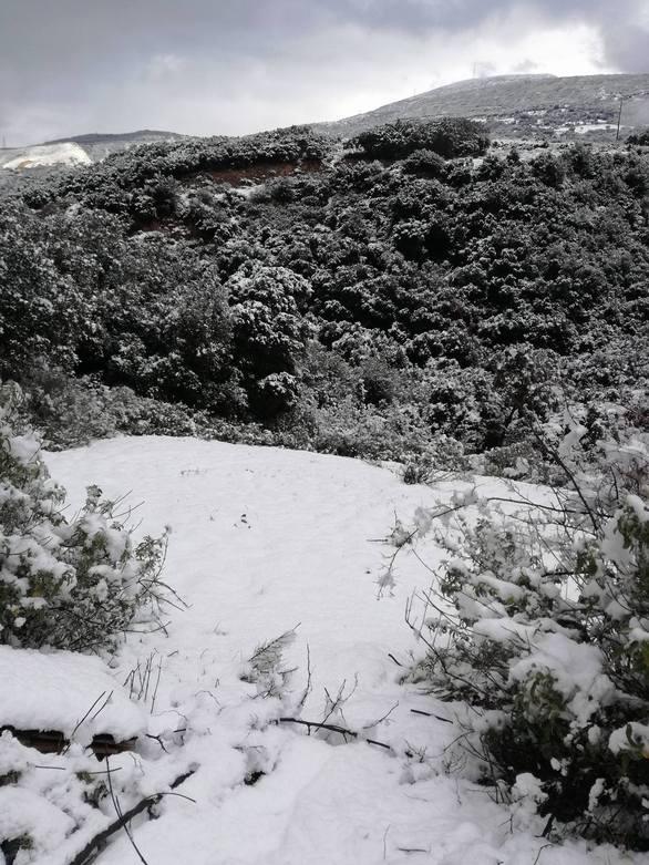 Σε λευκό κλοιό η Πάτρα - Δείτε νέες φωτογραφίες από την Γέφυρα Ρίου - Αντιρρίου έως και την... Achaia Clauss
