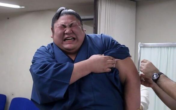 Όταν οι γίγαντες του σούμο γκρινιάζουν σαν μικρά παιδιά εξαιτίας ενός εμβολίου (pics)