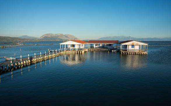 Γαλήνη και απόκοσμη ατμόσφαιρα στη λιμνοθάλασσα του Μεσολογγίου (φωτο+video)