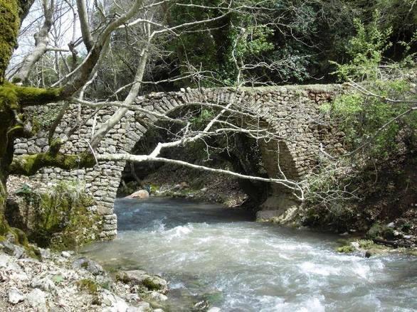 """Βλασία: Το ομορφότερο χωριό των Καλαβρύτων, """"πνιγμένο"""" στα έλατα! (pics+video)"""