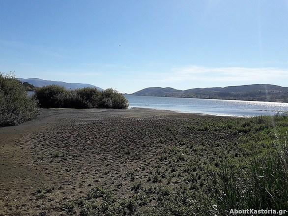 «Στέγνωσε» και η λίμνη της Καστοριάς (φωτο)