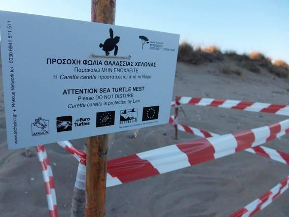 Ενημερωτική Εκδήλωση Caretta Caretta στην Οικολογική Κίνηση Πάτρας
