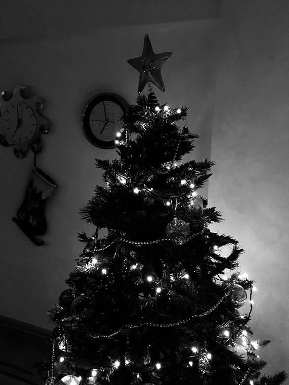 Πατρινοί ξεκίνησαν από τώρα να στολίζουν το Χριστουγεννιάτικο δέντρο (pics)
