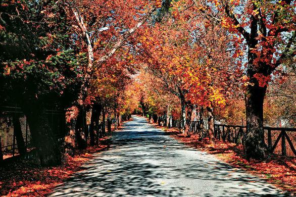 Ο «δρόμος της αγάπης» βρίσκεται στην Ελλάδα και απέχει 2,5 ώρες από την Πάτρα!