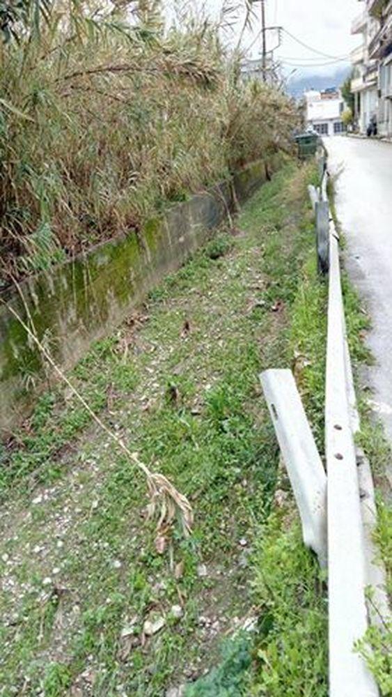 Πάτρα - Εστίες μόλυνσης και εγκατάλειψη στον ποταμό Διακονιάρη (pics)