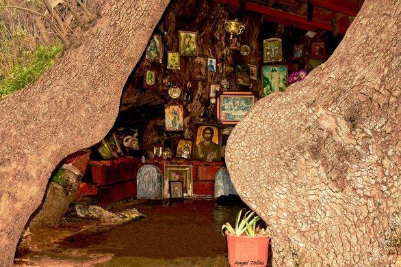 Όταν η κουφάλα ενός πλατάνου στο Άνω Καστρίτσι της Πάτρας, μετατράπηκε σε μια μικρή εκκλησία!