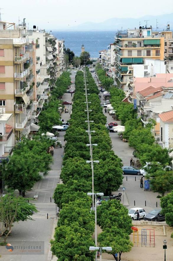 Η άνοιξη στην Πάτρα είναι μια βόλτα στο δρόμο με τις νεραντζιές!