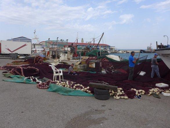 Πάτρα - Το ακάματο βλέμμα της βιοπάλης στους ψαράδες της Ιχθυόσκαλας