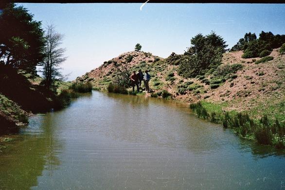 Η λιμνούλα στο ελατόδασος του Παναχαϊκού στο Άνω Καστρίτσι της Πάτρας!