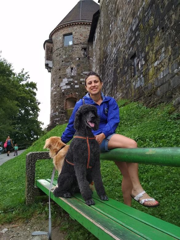Primo & family: Η ζωή με 3 σκυλιά
