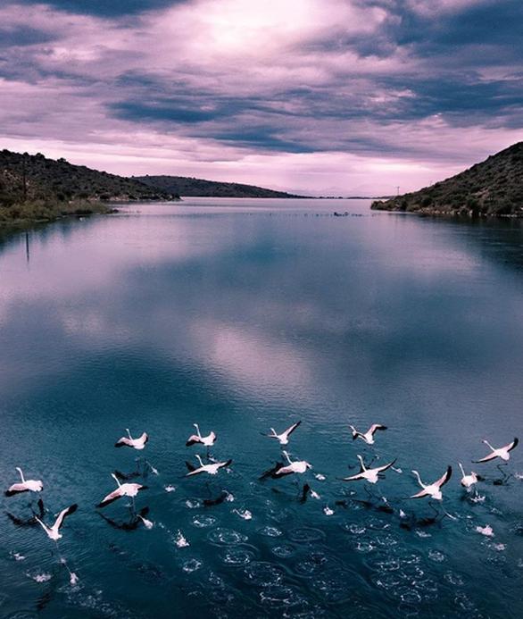 φωτο - g_mitropoulos