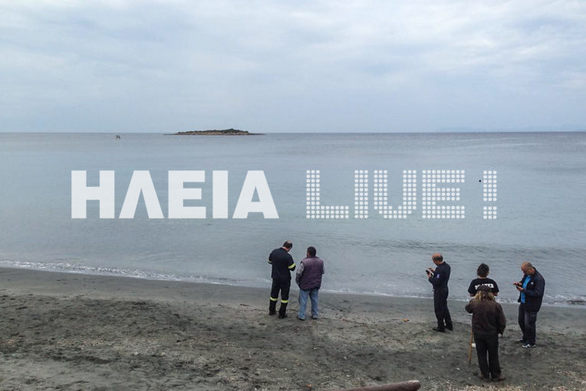 """Ηλεία - Φιλόζωοι έκαναν """"εκστρατεία"""" και έσωσαν την Χάιδω από την θάλασσα (pics)"""