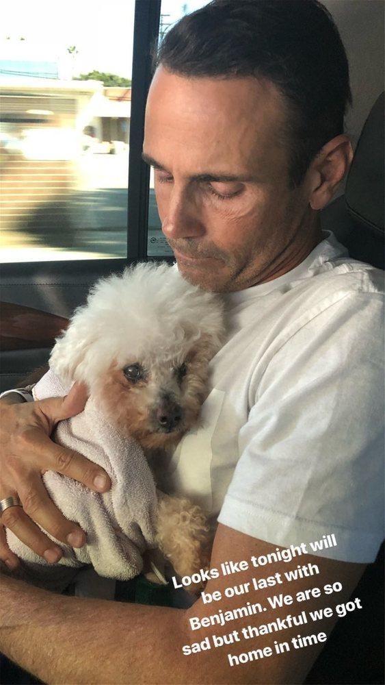 Πέθανε το σκυλάκι της Μαρία Μενούνος