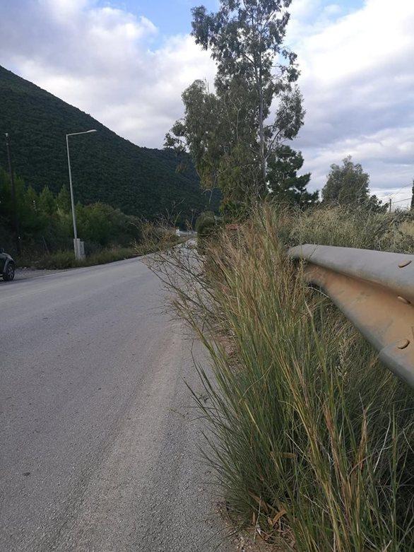 Καταγγελία για Πατρών -  Κορίνθου: Οι θάμνοι έγιναν επικίνδυνοι για τους οδηγούς (pics)