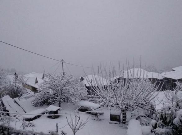 """Στα άσπρα """"ντύθηκαν"""" περιοχές της Αιτωλοακαρνανίας - Δείτε φωτογραφίες"""