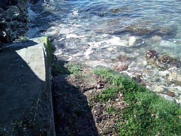 """Αχαΐα: Τα μπάζα στην παραλία Καμινίων """"έστησαν"""" φράγμα και έγιναν επικίνδυνα (pics)"""