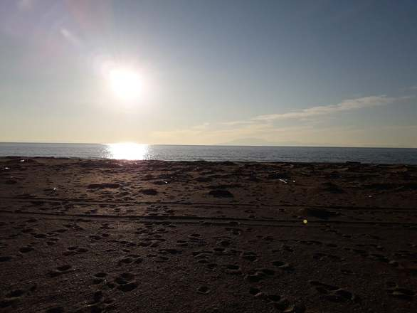 Καλωσορίζοντας την άνοιξη στην παραλία της Καλόγριας (φωτο)