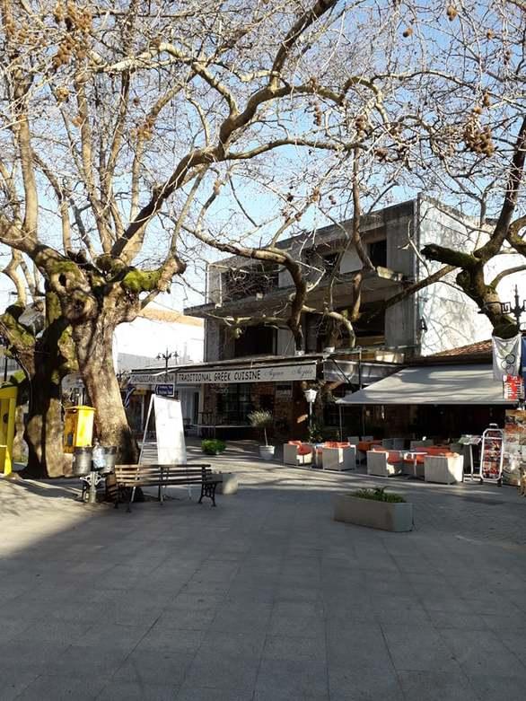 Ολυμπία - Το χωριό δίπλα στην ιστορία! (φωτο)