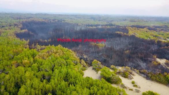 Πετώντας πάνω από τα καμμένα της Στροφυλιάς - Τι άφησε πίσω της η πυρκαγιά (pics+video)