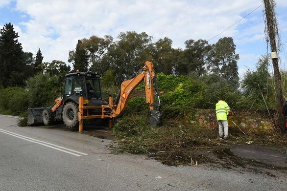 Πάτρα: Συνεργεία του Δήμου καθάρισαν την ΠΕΟ Πατρών - Πύργου (φωτo)