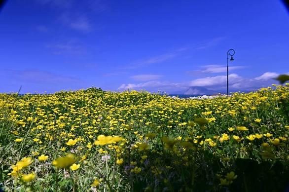 Spring spirit... στην Πάτρα (pics)