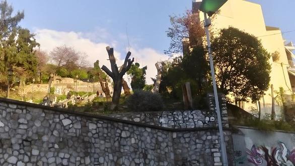 """Σκάλες Αγίου Νικολάου - Από τη... ζούγκλα πέρασαν στη """"γύμνια"""" (φωτο)"""