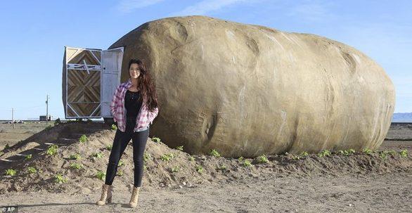 Ένα διαμέρισμα σε σχήμα πατάτας
