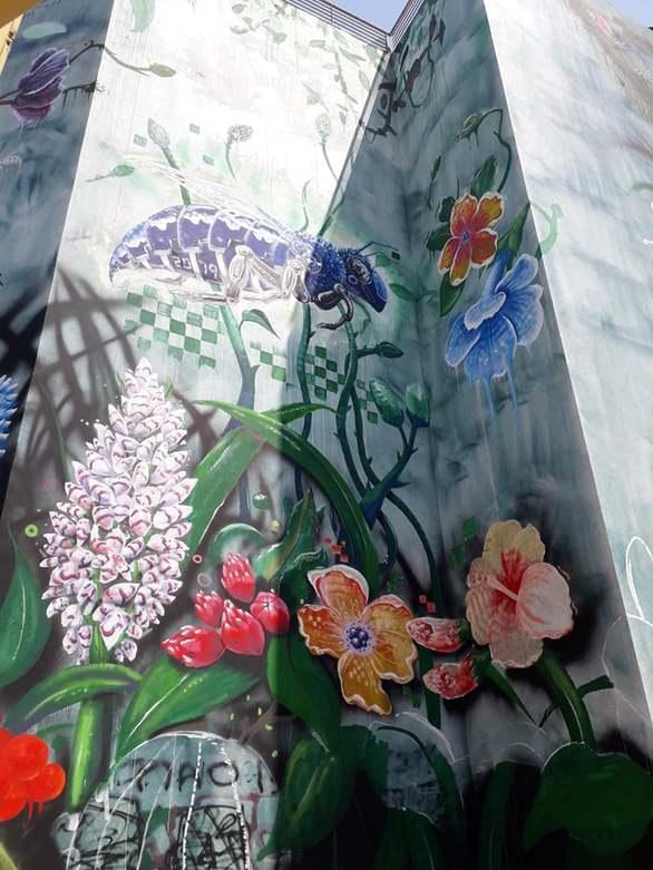 Ένας εξωτικός κήπος στην Πάτρα! (φωτο)