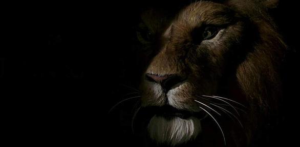 "H ταινία ""Ο Βασιλιάς των Λιονταριών"" έρχεται στους κινηματογράφους (pics+video)"